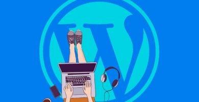 Sitemap en Wordpress 5.5