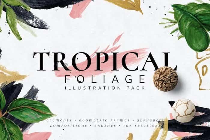 Pinceles Tropicales Affinity e Illustrator